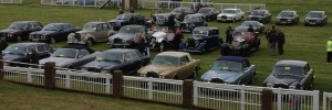 A Small selection of the 100's of Cars at the Show