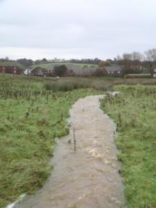 Flod Water Threatens Tilling Green