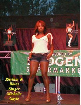 Rye Goes Pop 2004