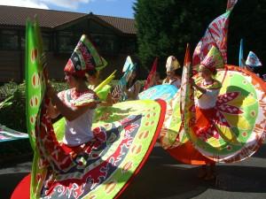 Rye Carnival Colour