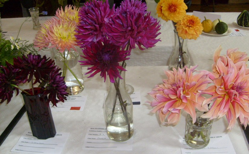 Rye Flower Show